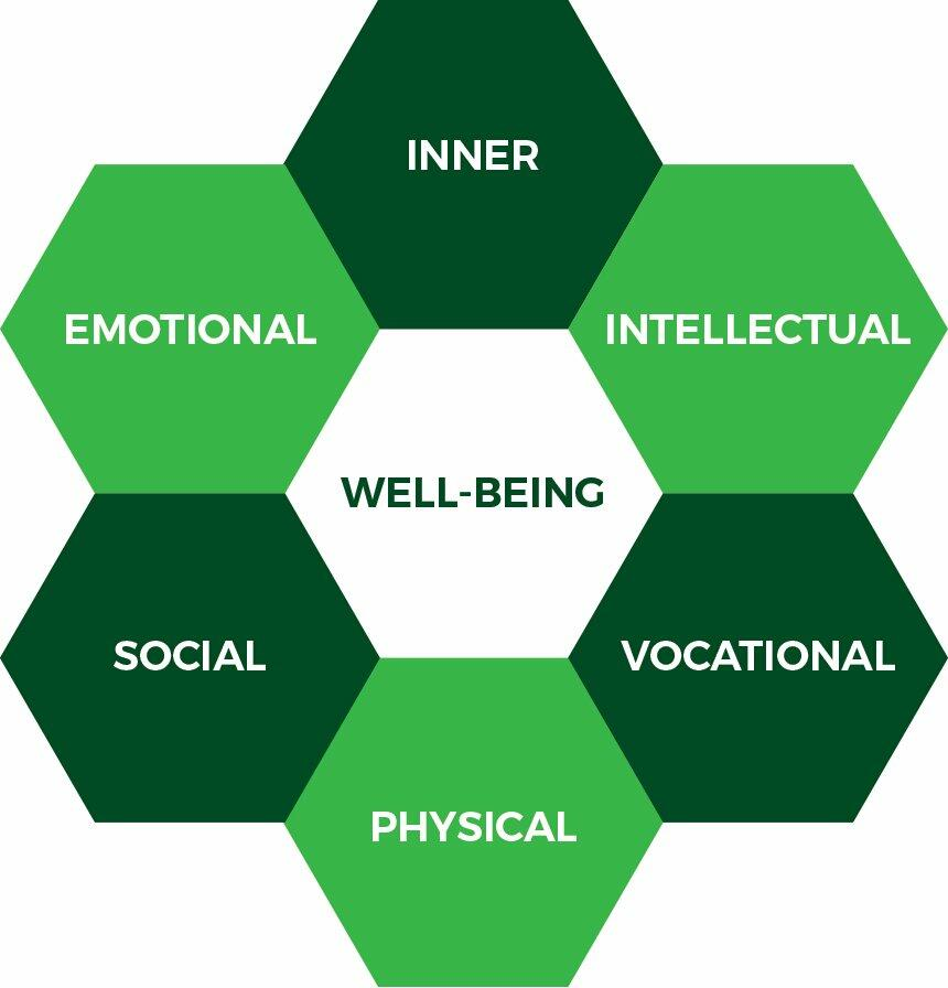 What is well-being hexagram